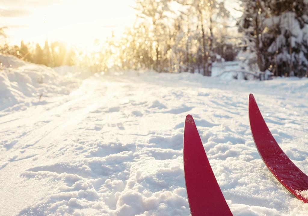 Flotte skiløyper i Østmarka